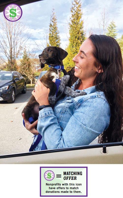 Puppy_adoption